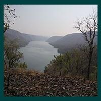 Nallamala hills