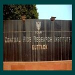 central Rice Research Institute of India