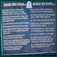 Mudumalai Sanctuary