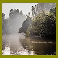 Bhitarkanika National Park